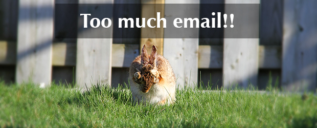 Too_Much_Email