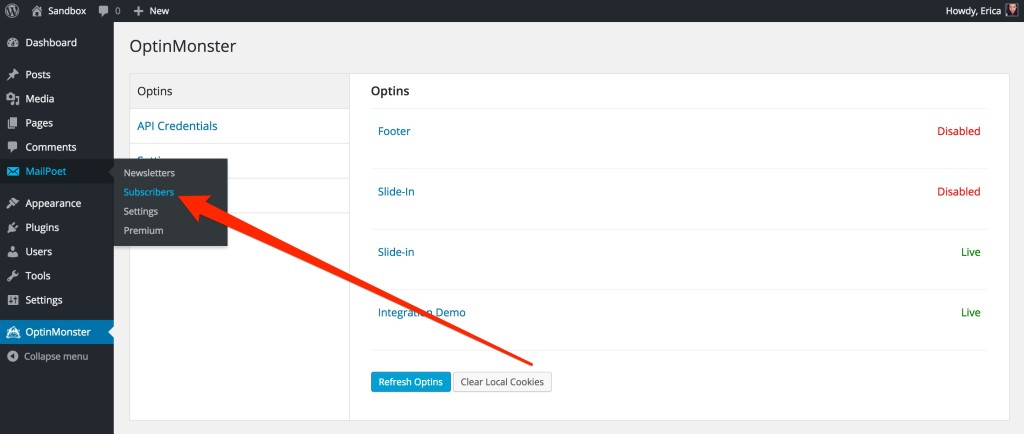 When you integrate with MailPoet you can manage your subscribers from within your WordPress admin.