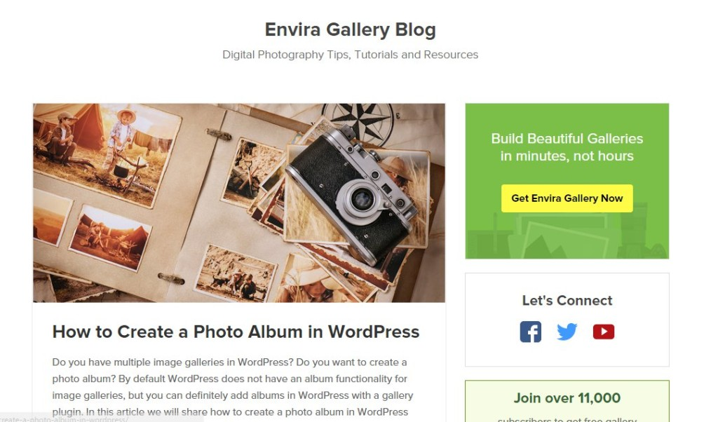 Blog Article at EnviraGallery.com
