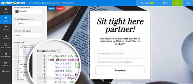 CSS-added-for-Custom-Fields-Optin