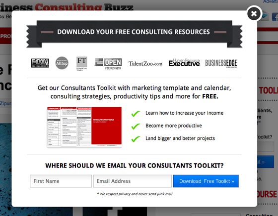 Business Consulting Buzz Optin