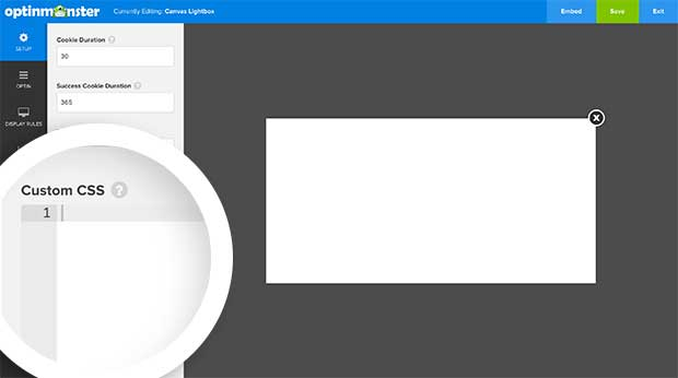 Custom CSS for Canvas