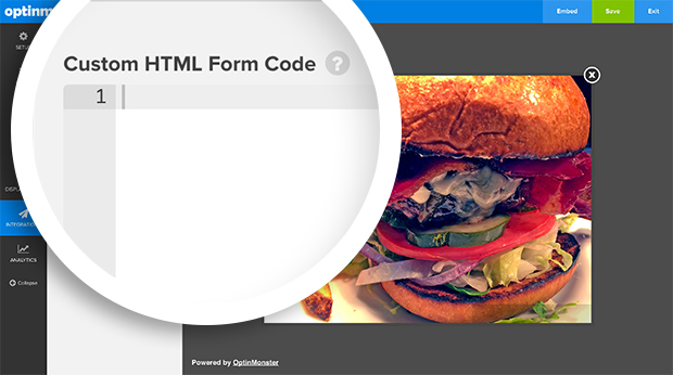 Paste your form code into the Custom HTML Form Code field.