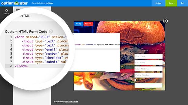 Paste your custom HTML form code into the provided field of the Integrations panel.