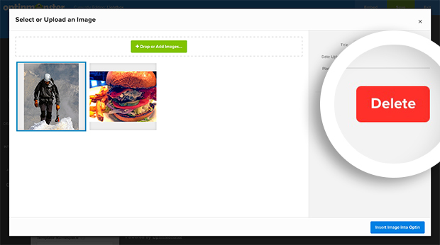 Select the Delete button in the image management lightbox to remove it permanently from your OptinMonster account.