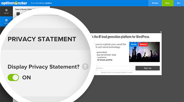 Toggle the Privacy Statement option to enable the appearance of a privacy statement below your optin form.