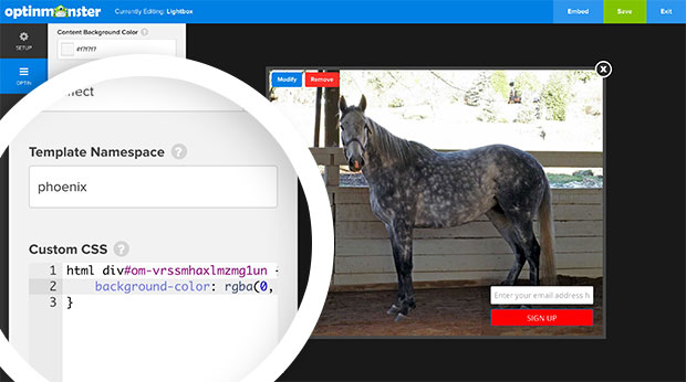 Transparent Overlay CSS