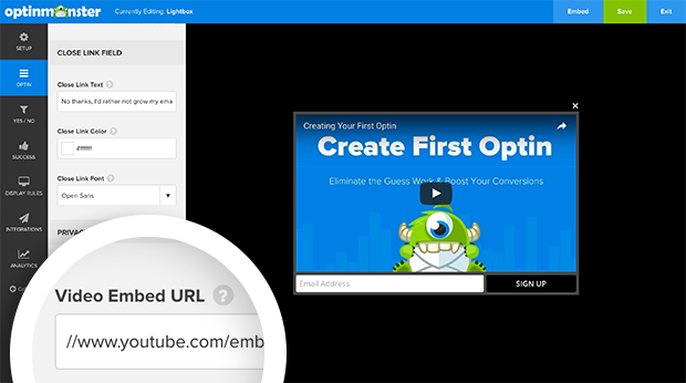 Paste your video's embed URL in the provided field.