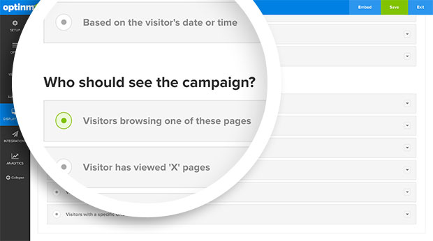 Who Should See Campaign Section