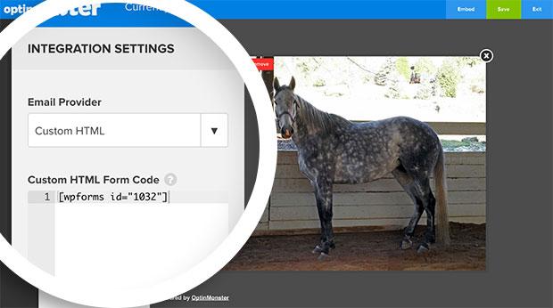 Custom HTML Integration WPForms Shortcode