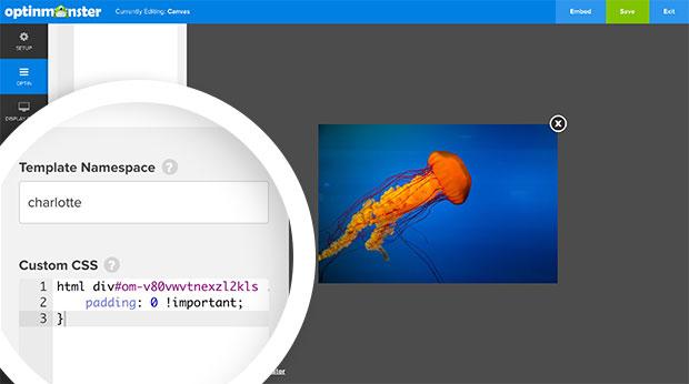 Lightbox Canvas Custom CSS to Remove the Default Padding