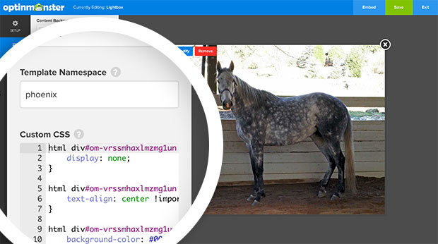 Custom CSS for WPForms Shortcode Form