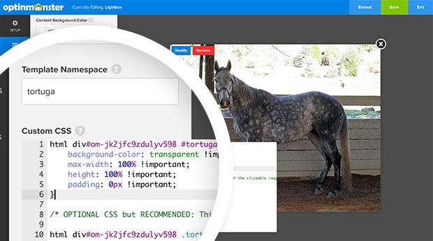 Link Optin Custom CSS