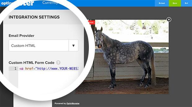 Clickable Optin Custom HTML Code