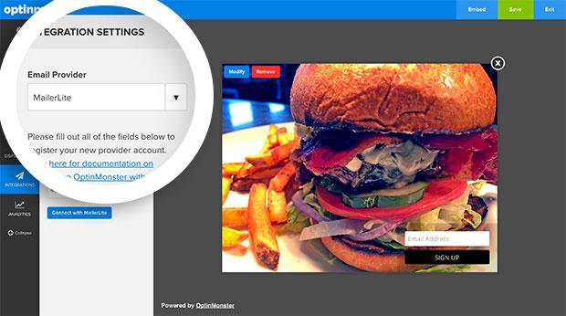 MailerLite Email Provider