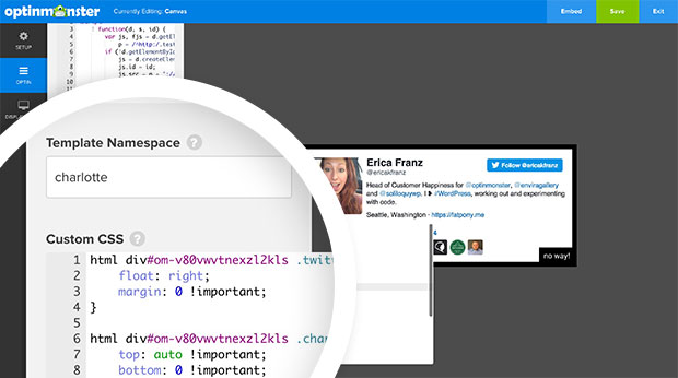 Twitter Campaign Custom CSS