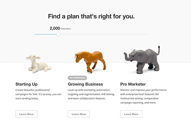 MailChimp find a plan