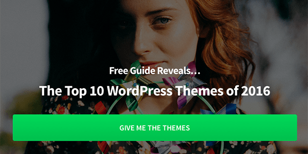 mary-wp-themes