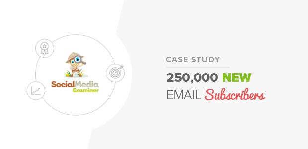 Social Media Examiner Case Study