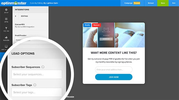 Once a ConvertKit Form is selected you can optionally configure additional Lead Options for your integration.