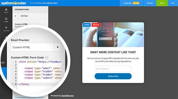 Paste your Feedburner code into the Custom HTML field.