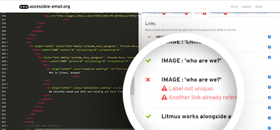 litmus email accessibility test