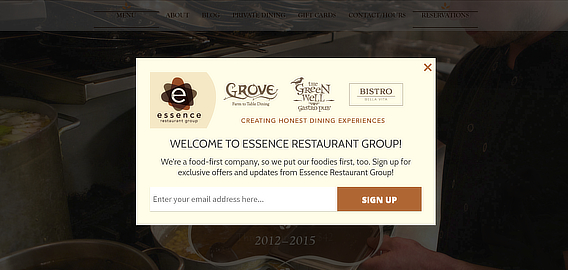 essence restaurant email marketing examples