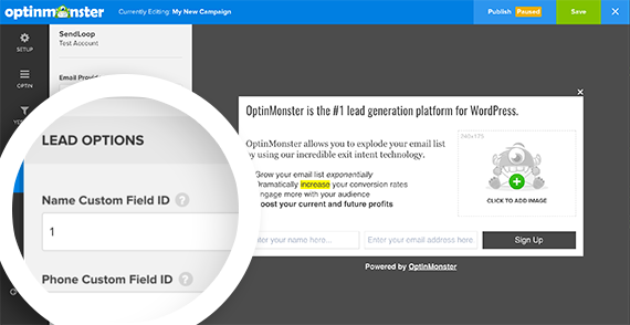 You can specify IDs of custom fields for your campaign in the Lead Options section of the integrations panel.