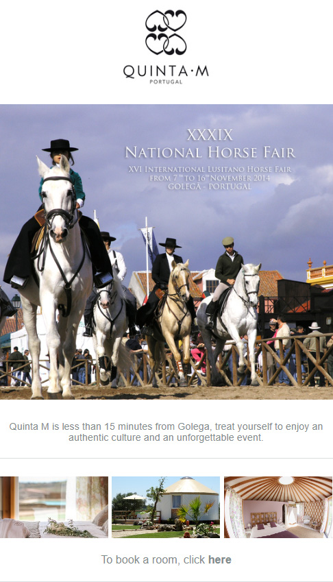 travel newsletter example from Quinta M