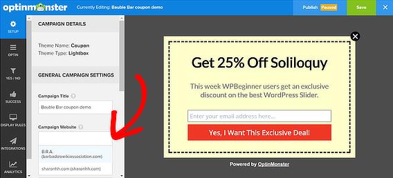 popup coupon add website