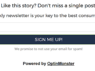 Inline Campaign Examples - OptinMonster Gallery