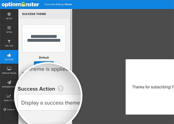Set Success Action to Display success theme