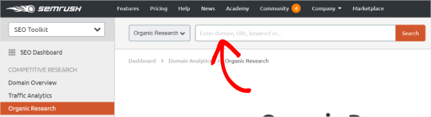 semrush enter search terms