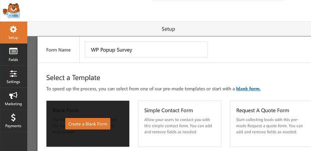wpf choose blank form