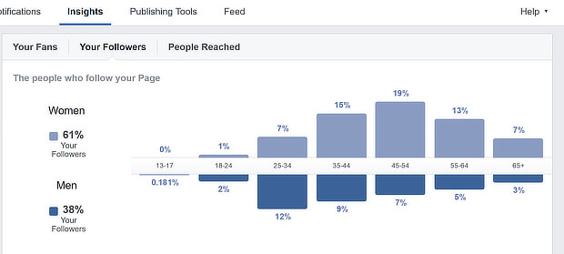 content marketing strategy example - facebook page insights