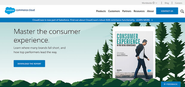 Salesforce Commerce Cloud online personalization