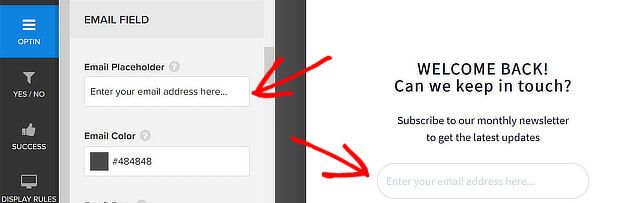 website popups - email placeholder editing field