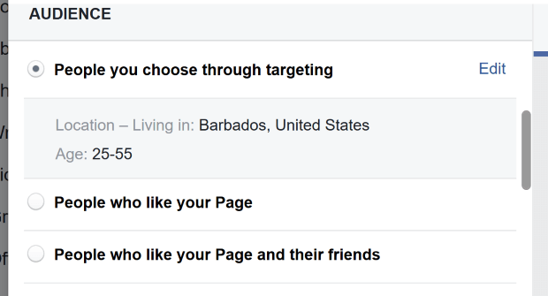 fb choose audience