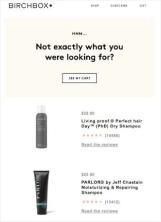 birchbox_abandoned_cart_email_top