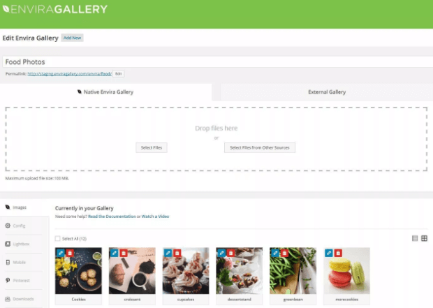 envira gallery - best wordpress gallery plugin