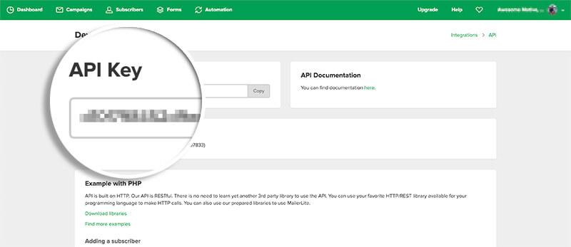 MailerLite Copy API Key