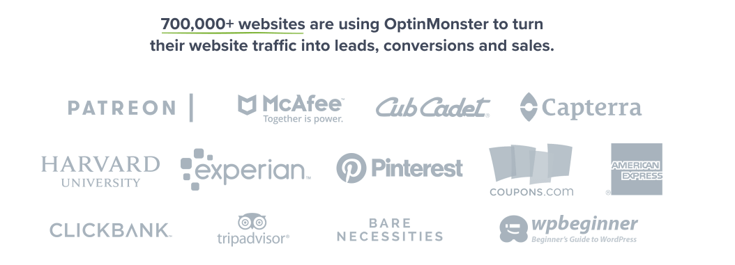 Enterprise Companies Using OptinMonster to Increase Conversions and Leads