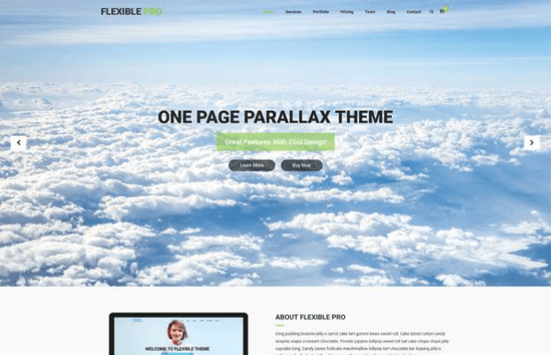 flexible pro woocommerce wordpress theme