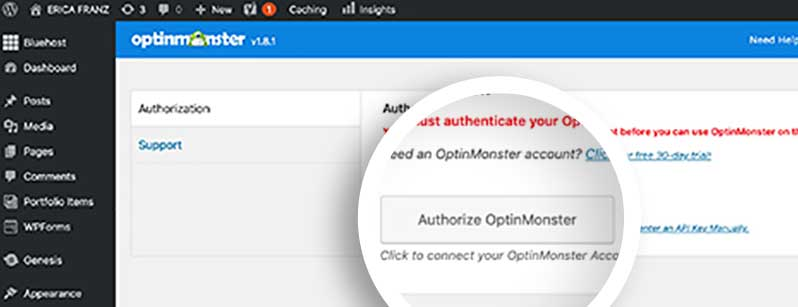 Authorize OptinMonster on your WordPress site