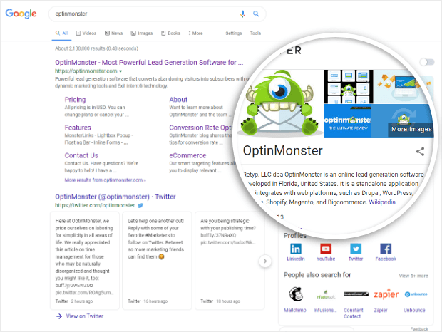 optinmonster's knowledge panel