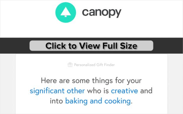 Canopy-Website-Behavior-mail