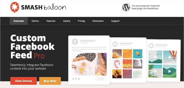 Page d'accueil de Smash Balloons