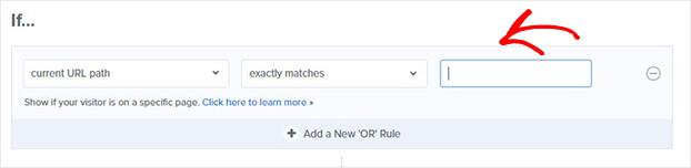 Page Targeting URL