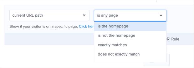 current URL path options